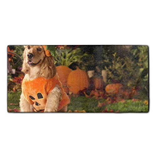 (Dog Dressed As A Pumpkin Hand Towel 11.8 x 27.5 Inches - Multipurpose Bathroom Towels for Hand, Face, Gym and)