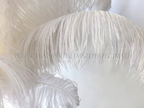 Perfectmaze 100 Piece 14''-16'' Ostrich Feather Premium Quality for Wedding Party Centerpiece Vase Decoration by Perfect Maze
