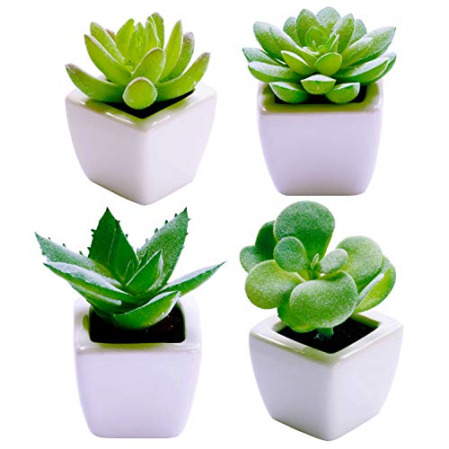 Artificial Succulent Plants [SET OF 4]| Fake Succulents Faux Cactus Plant Decoration for Home, Office Desk, Table, Shelf, Mantle - Absolutely ZERO Maintenance - Small and Mini for Decor Comes Potted]()