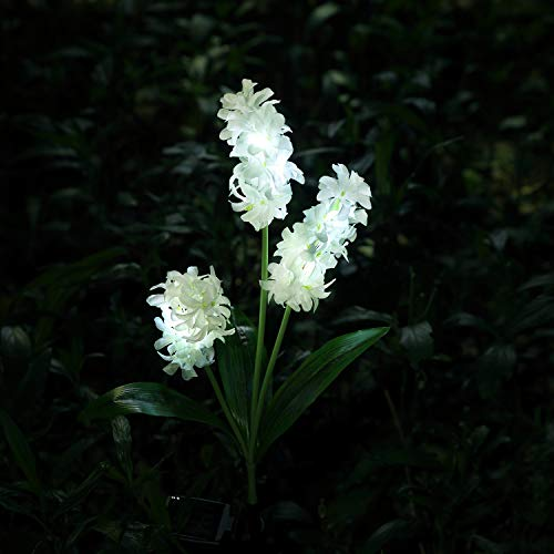 XLUX Outdoor Solar Powered Hyacinth Lights Flower Stake hyacinthus orientalis, for Garden Patio Yard Christmas Pathway Decoration, White