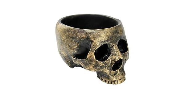 Bronzed Resin Skull Bowl Jewelry Box Collectible Figurine