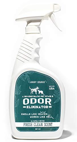 Angry Orange - Professional Strength Enzyme Pet Stain Spray & Odor Eliminator - Dog & Cat Urine Destroyer I for Floors & Carpet I - 32oz Pet Odor Remover (Best Diy Wood Floor Cleaner)