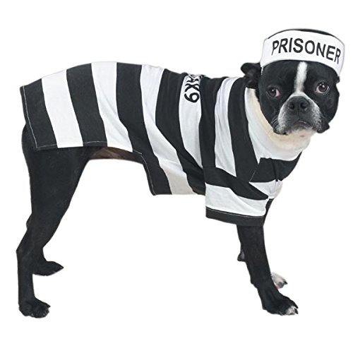 Casual Canine Prison Pooch Costume for Dogs, 24