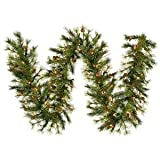 Vickerman Pre-Lit Mixed Country Pine Garland with 50 Warm White Italian LED Lights, 6-Feet, Green