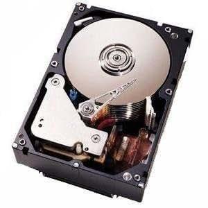 300GB U320 SCSI 10K Rpm 3.5IN Non Hot-swap