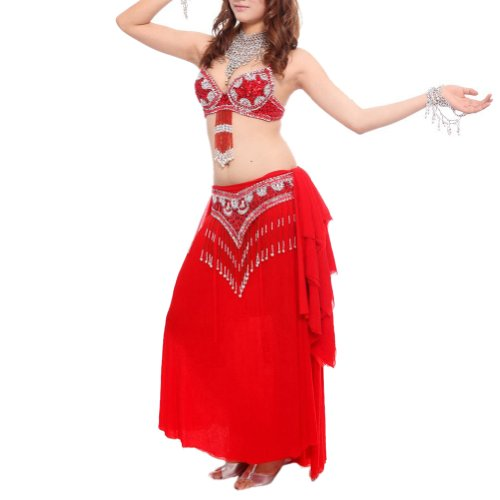 BellyLady Professional Belly Dance Costume, Fringe Bra, Waist Belt and (Belly Dancer Costume Cheap)