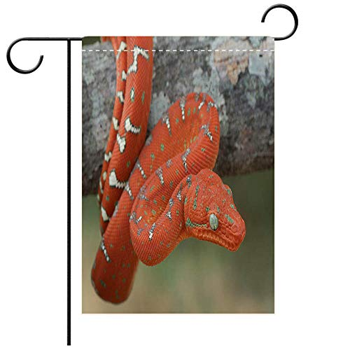 BEICICI Garden Flag Double-Sided Printing,Baby Emerald Tree Boa Hanging on Tree Branch in Rainforest Decorative Deck, Patio, Porch, Balcony Backyard, Garden or Lawn