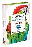 Hammermill Paper, Color Copy, 32lb, 11 x 17, Ledger, 100 Bright, 500 Sheet