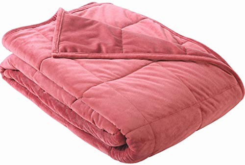 Layer Two Blanket Fleece - Sedona House 3G Weighted Blanket - Adults ADHD Anxiety Stress Relief Heavy Fleece Blanket, 15LBS (Red, Twin 48
