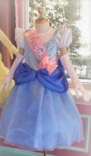 0d85b6274b877 東京ディズニーランド ビビディバビディブティック ドレス シンデレラ コスチューム 120~130(115~135)