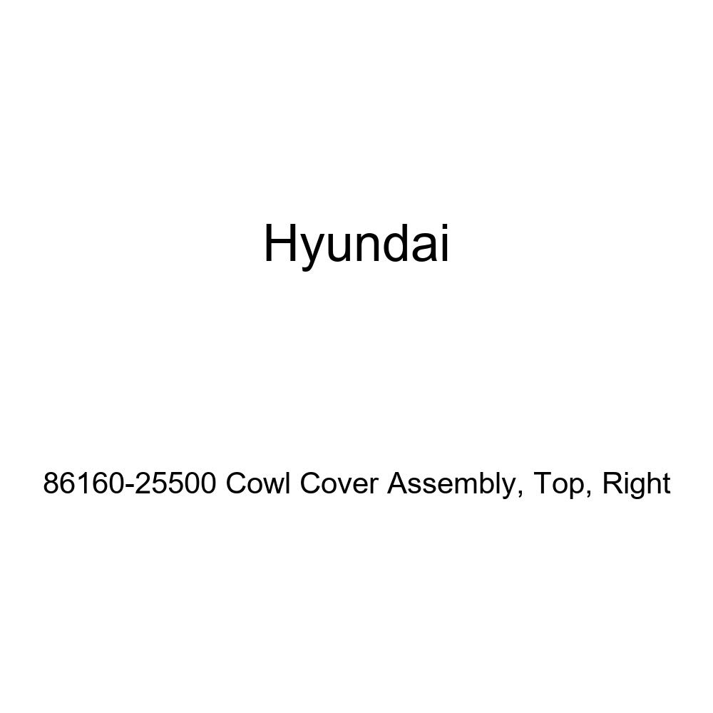 Genuine Hyundai 86160-25500 Cowl Cover Assembly Right Top