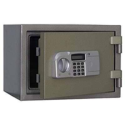 Steelwater AMSWEL-310 2-Hour Fireproof Home and Document Safe