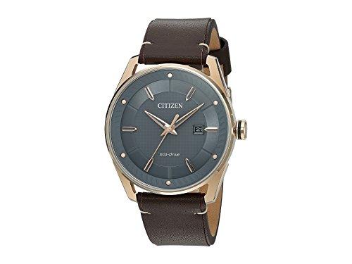 Citizen Men's Eco-Drive Leather Strap Watch (Mens Leather Watches Citizen Gold)