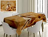 Nalagoo Unique Custom Cotton and Linen Blend Tablecloth Animal Decor Collection Arabian Horse Breed Running Out of The Desert Storm Sand High Tail CTablecovers for Rectangle Tables, 60 x 40 inches