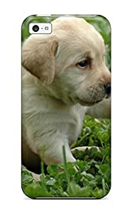 Awesome Design Labrador Retriever Puppies Hard Case Cover For Iphone 5c