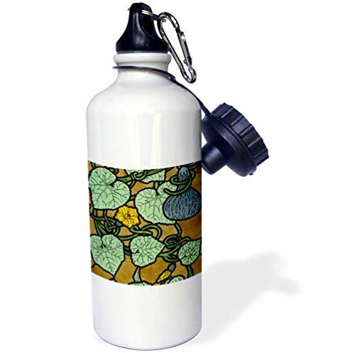 3dRose Russ Billington Designs - Art Nouveau Watercolor Painting of Flowering Gourd - 21 oz Sports Water Bottle ()