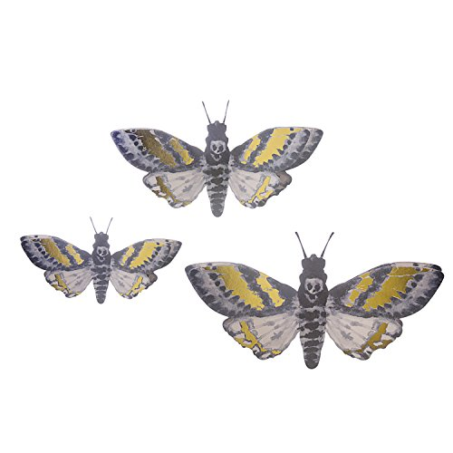 (Martha Stewart Paper Moths Wall)