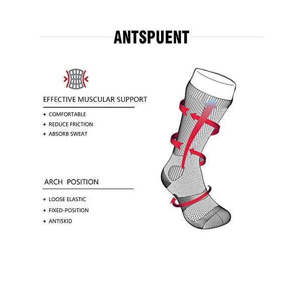antspuent English Springer Spaniel Santa Christmas Compression Socks Athletic Cotton Crew Socks Multi Performance Outdoor Sports Hiking Casual Socks 3