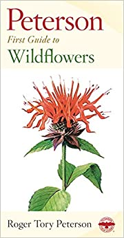 _WORK_ Peterson First Guide To Wildflowers Of Northeastern And North-central North America. audio bunker intended Craft partido Unidades