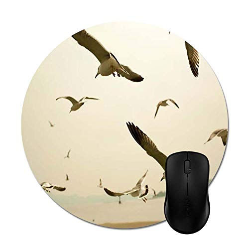 (Birds Flock Fly Nature Ocean Seagulls Sea Mouse Pad - Trendy Stylish Office Accessory Computer Gaming(8