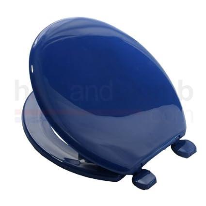 Excellent Carrara Matta Atlantic Bs2 Marine Blue Coloured Plastic Toilet Seat And Cover With Adjustable Plastic Hinges Ibusinesslaw Wood Chair Design Ideas Ibusinesslaworg