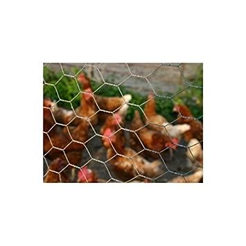 """Malla triple torsión """"gallinas, conejos, patos.. Gamme Eco rollo"""