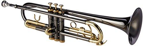 Anthracite Finish - Roy Benson MOD.TR-101K BB Anthracite Laquered Finish Trumpet with Light Rectangular Case