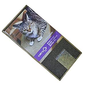 CATRY CAT SCRATCHING POST WITH CATNIP