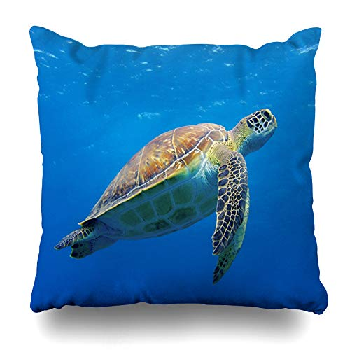 Ahawoso Throw Pillow Cover Zakynthos Happy Cute Sea Turtle Swimming Freely in Blue Roatan Ocean Scuba Diving Underwater Rich Decor Zippered Cushion Case 16