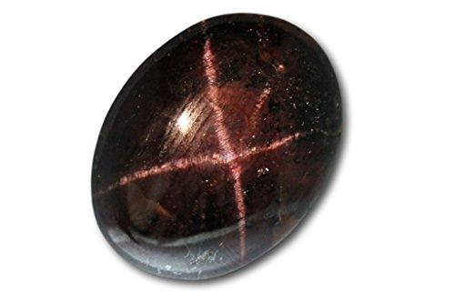 Grenat almandin étoilé naturel de Madras de 36,42 carats 25,4 x 19,4 x 6,5 mm