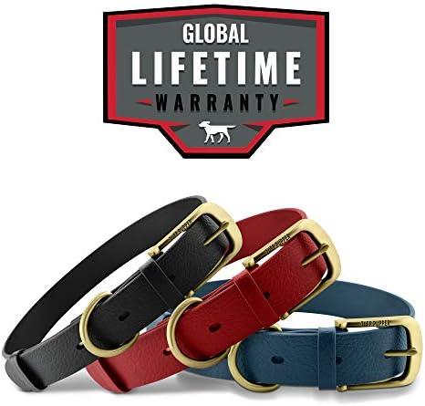 Ruff Life/'s Nautical heavy duty dog collar with Jacquard ribbon and heavy red polypropylene webbing