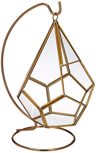 "(Circleware 32502 Terraria Glass Plant Terrarium, Gold Frame with Stand, Home Decor Flower Balcony Display Box and Garden Gifts 7"" x 9"" Triangle-Gold-7x9)"