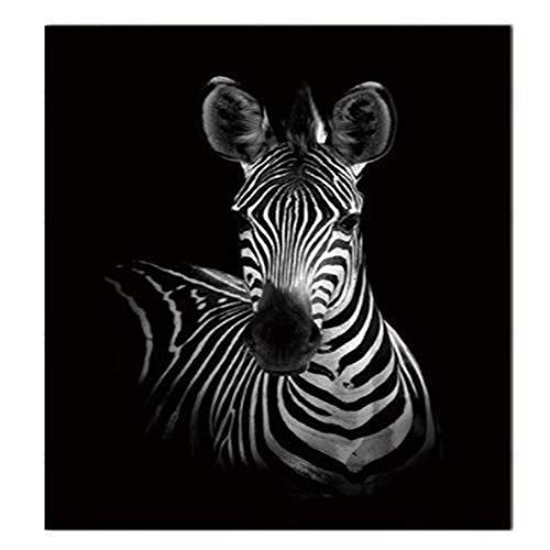 RONGT Animal Canvas Wall Art Decor - African Landscape Scenery Zebra Print Painting Picture, Wall Art Poster for Living Room Bedroom Home Decor -