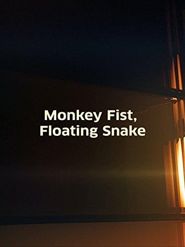 Monkey Fist, Floating Snake (Paracord Monkeys Fist Keychain Self Defense Weapon)