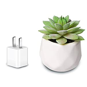 AmyHomie Artificial Plants Set of 4 Mini Fake Succulent Plants with Pots for Home Weeding Office Decoration 5