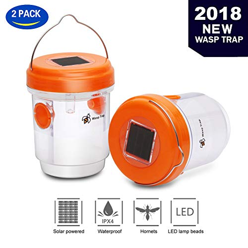 T Box Upgraded Version Solar Powered Wasp Trap with UV LED Light,Hornet Trap,Yellow Jacket Traps & Wasp Traps for Outdoors,Wasp Killer,Effective and Reusable (Orange) by T Box