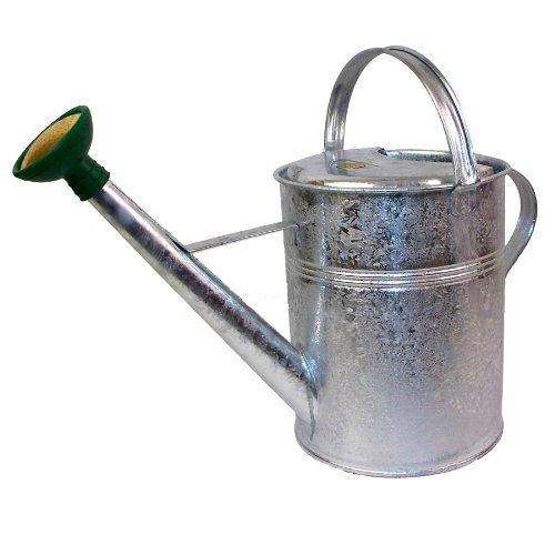 Bosmere Haws Traditional Peter Rabbit Design Metal Watering Can, 2.3-Gallon/8.8-Liter, Galvanized