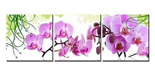 Canvas Print Wall Art Painting For Home Decor Pink Peach Tropical Butterfly Orchid Phalaenopsis Flowers Blooming On White Background Floral 3 Pieces Panel Paintings Modern Giclee Stretched And Framed Artwork The Picture For Living Room Decoration Flower Pictures Photo Prints On Canvas (Picture Orchid Phalaenopsis)