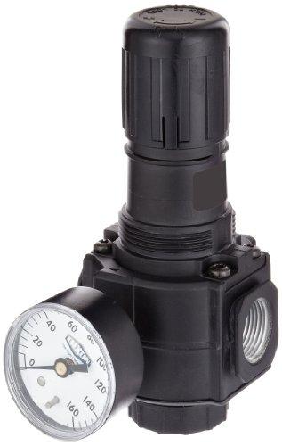 Dixon R74G-6RG Norgren Series Regulator with Gauge, 1/2