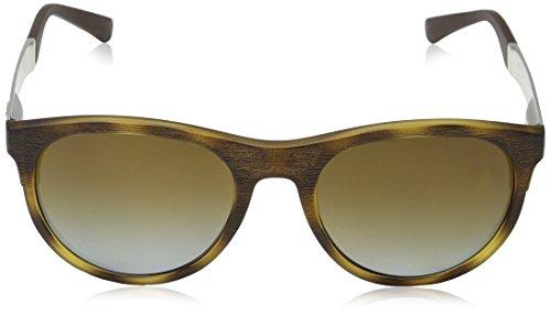 Sonnenbrille Matte 5089t5 EA4084 Dark Emporio Armani Havana gwtBqSR5
