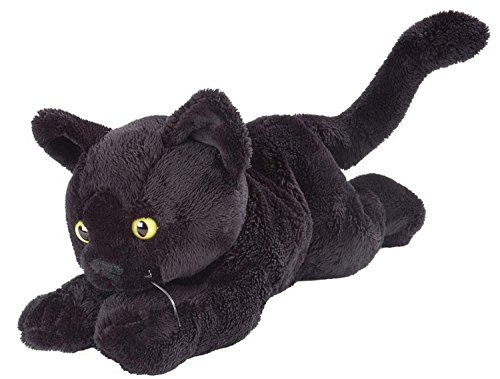 Amazon.com: Wild Republic Floppy Black Shorthair Black Cat 7 ...