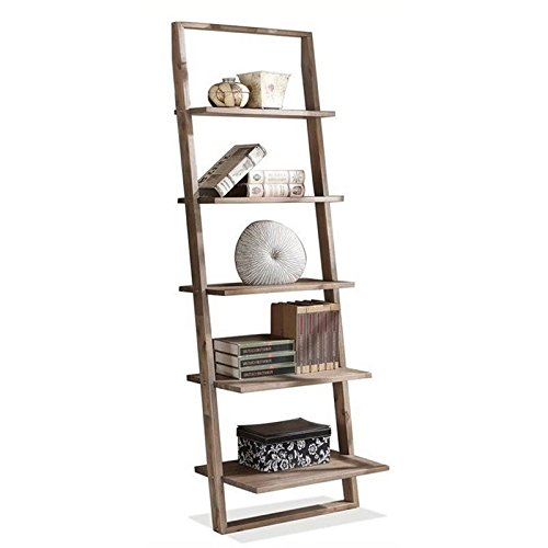 Beaumont Lane Leaning Bookcase in Smoky Driftwood by Beaumont Lane