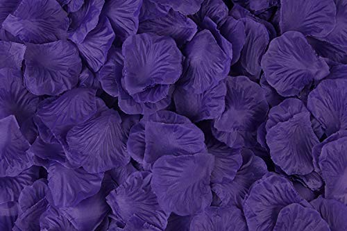 Grace Florist 2000 Pcs Silk Rose Petals Wedding Flower Decoration for Hotel Party Aisle Decor (deep Purple)]()