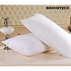 BRIGHTJEX Luxury Soft Pillow for Sleeping, Machine Washable- Set of 2 (16″ x 24″ White Foam)