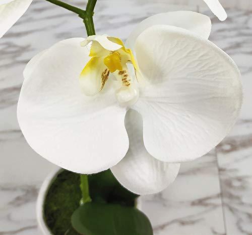LIVILAN Artificial Flower Arrangement Phalaenopsis Orchid Silk Fake Flower with Decorative Ceramic White Vase Vivid Potted Orchid Plant,White