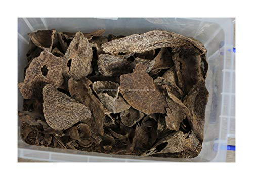 - oudwoodvietnam.com Oudh Agarwood Chips Oud Chips Incense Aroma | Natural Wild and Rare Agarwood Chips from Oudwood Vietnam | Pure Material Grade A++ (5 Grams)