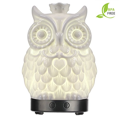 Essential Oil Diffuser 120ml Cool Mist Humidifiers -14 Color LED Nihgt lamps - Crafts Ornaments All in One is The Round Rich Upgrade Whisper-Quiet Operation Ultrasonic Ceramics Owl Humidifiers US120V