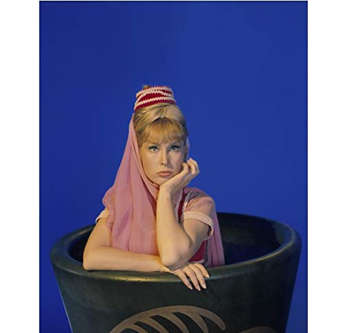 - Barbara Eden as Jeannie halfway out of vase I Dream of Jeannie 8 x 10 Inch Photo