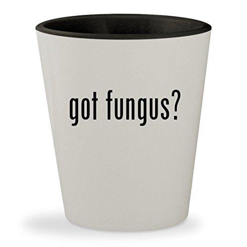 no miss fungus killer for feet - 9