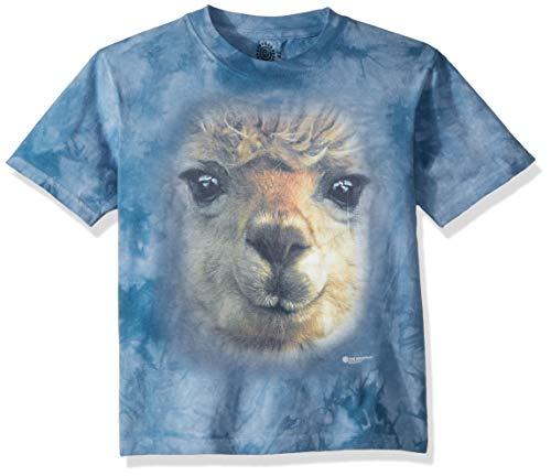 f91b3596 The Mountain Unisex-Adult's Big Face Alpaca, Blue, Small